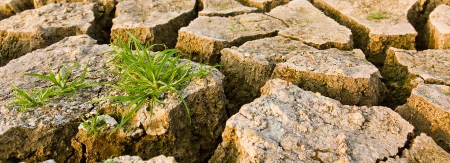 Los seguros y el cambio climático: ¿cubren los fenómenos atmosféricos?